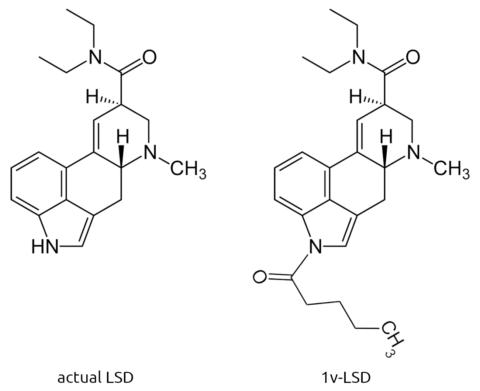 LSD vs 1v-LSD