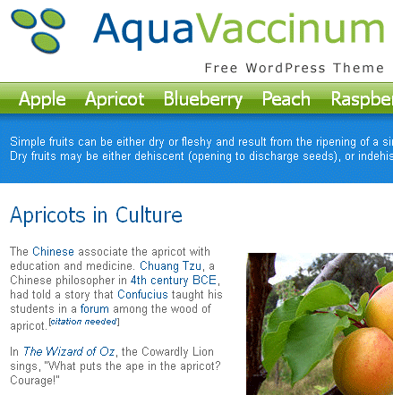 Aqua Vaccinium WordPress theme
